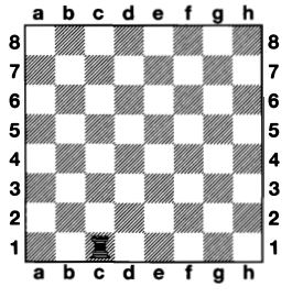 Rook on the chessboard